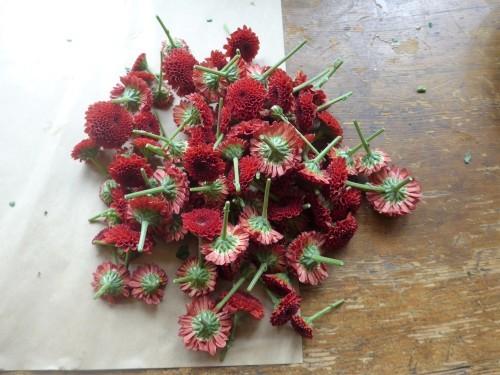 花修行~真っ赤なリンゴのアレンジメント~_f0232060_21130072.jpg