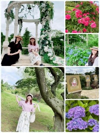山野さと子さんと京成バラ園と富岡八幡宮_a0087471_13245454.jpeg