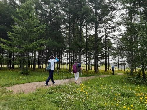 ノルディックウォーキング体験会 @モエレ沼公園_d0198793_01235683.jpg