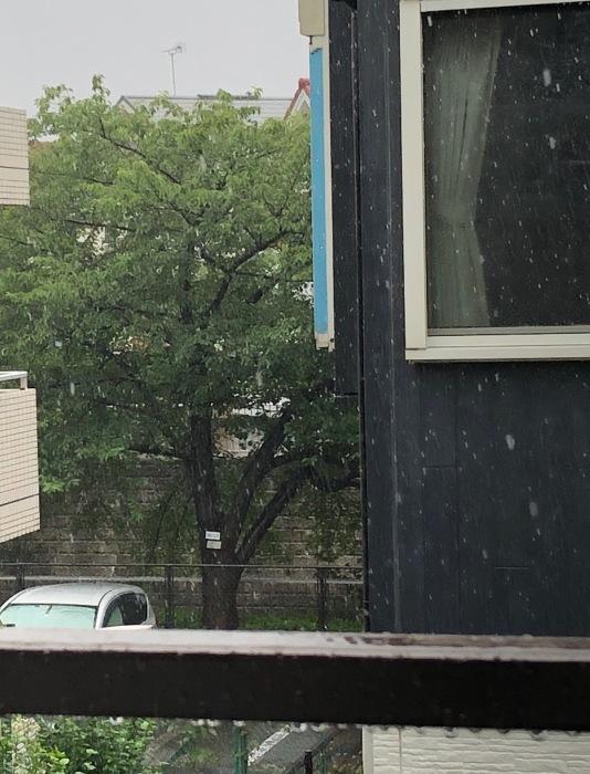 天気急変!_c0012247_01474177.jpg