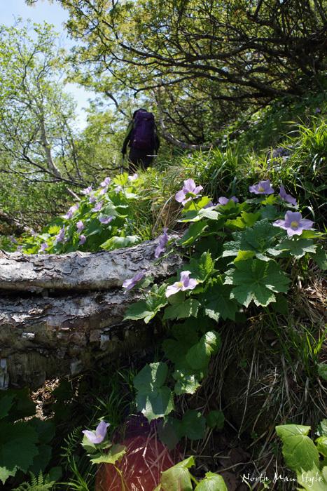 春のオロフレ山_a0114060_13320062.jpg