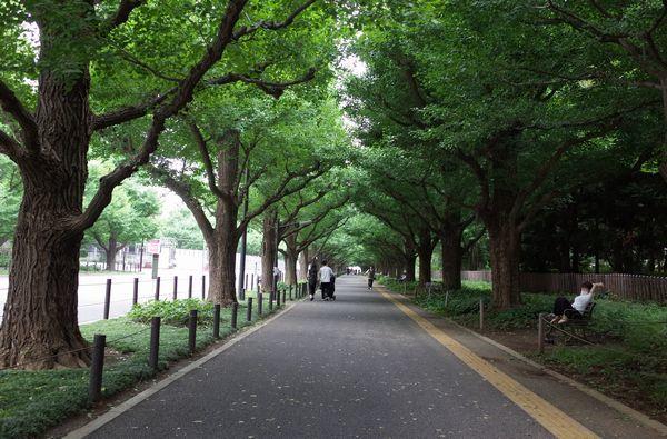 東京城_c0155474_10003463.jpg