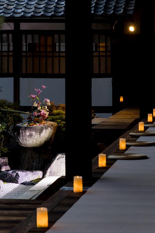 2021桜咲く京都  妙顕寺ライトアップ_f0155048_23374888.jpg