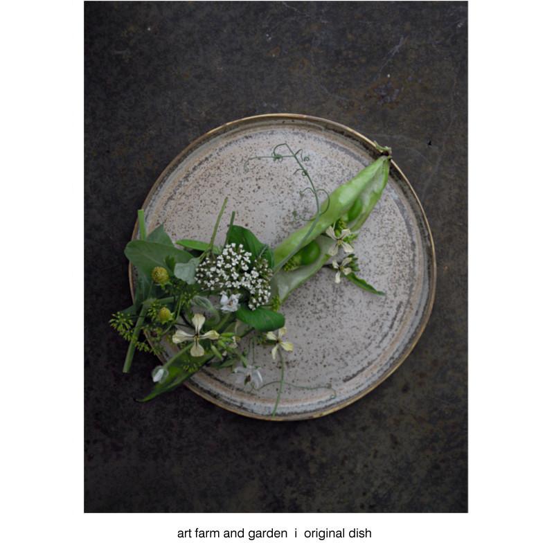 そら豆/[アート農場と庭]のアートフード_b0290469_21282379.jpg