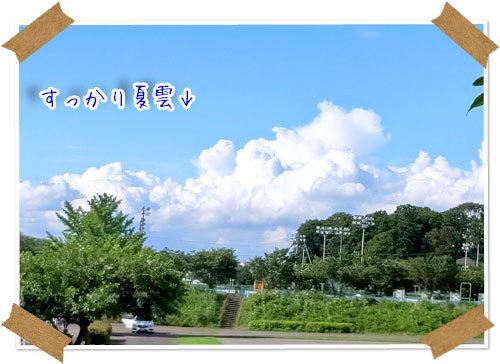 2021年7月11日 引地川公園_b0024183_17455036.jpg