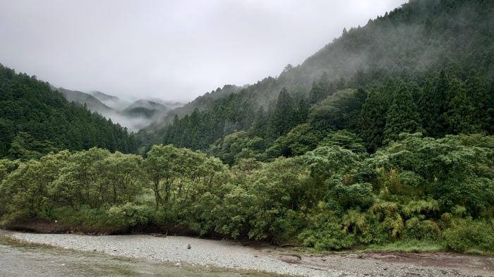 四国旅 7月1日 石鎚から山谷巡り_f0050534_07255484.jpg
