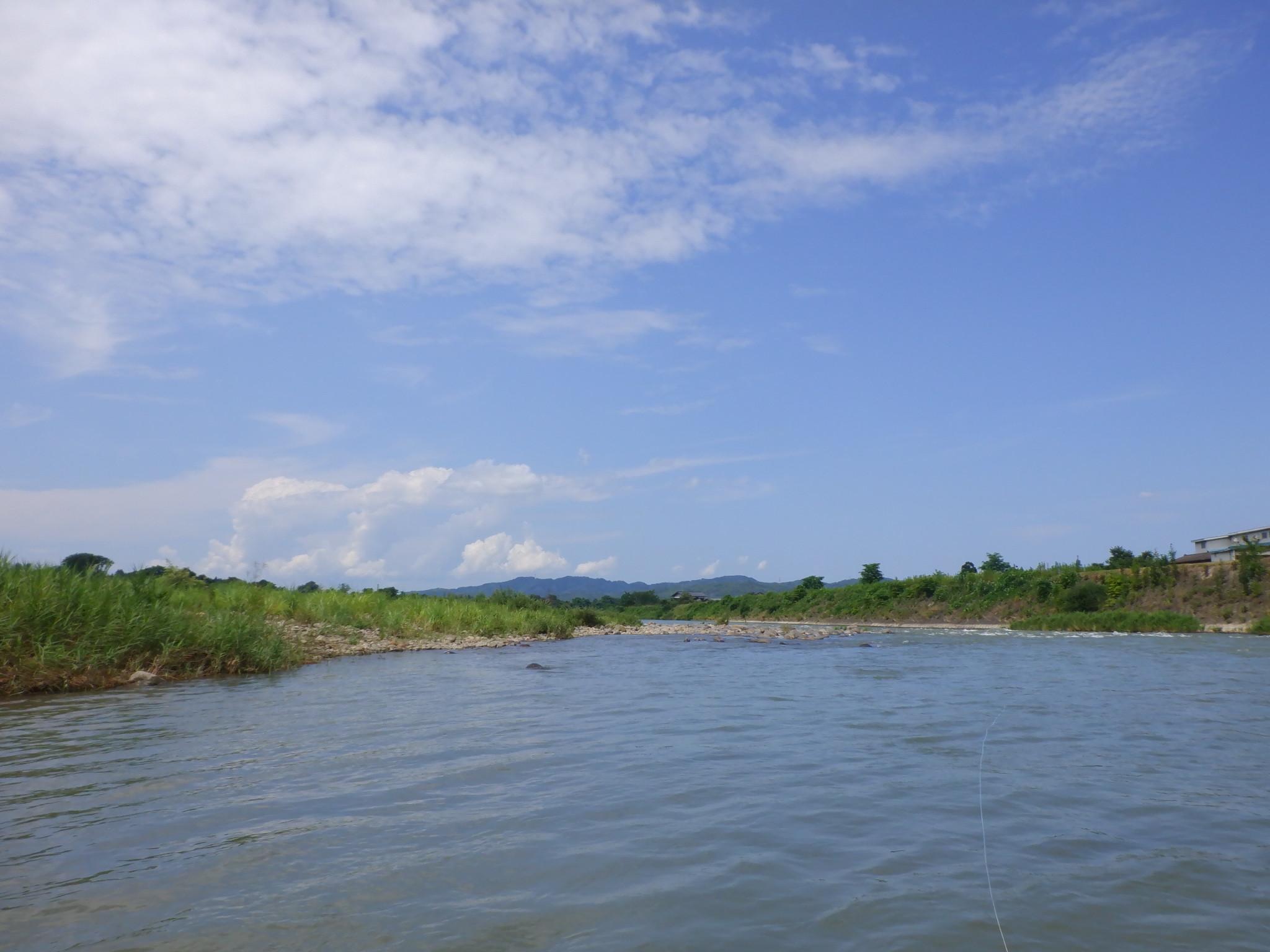 新潟県 三条市を流れる本流五十嵐川の真夏のウエットフライ。_f0055244_13385351.jpg