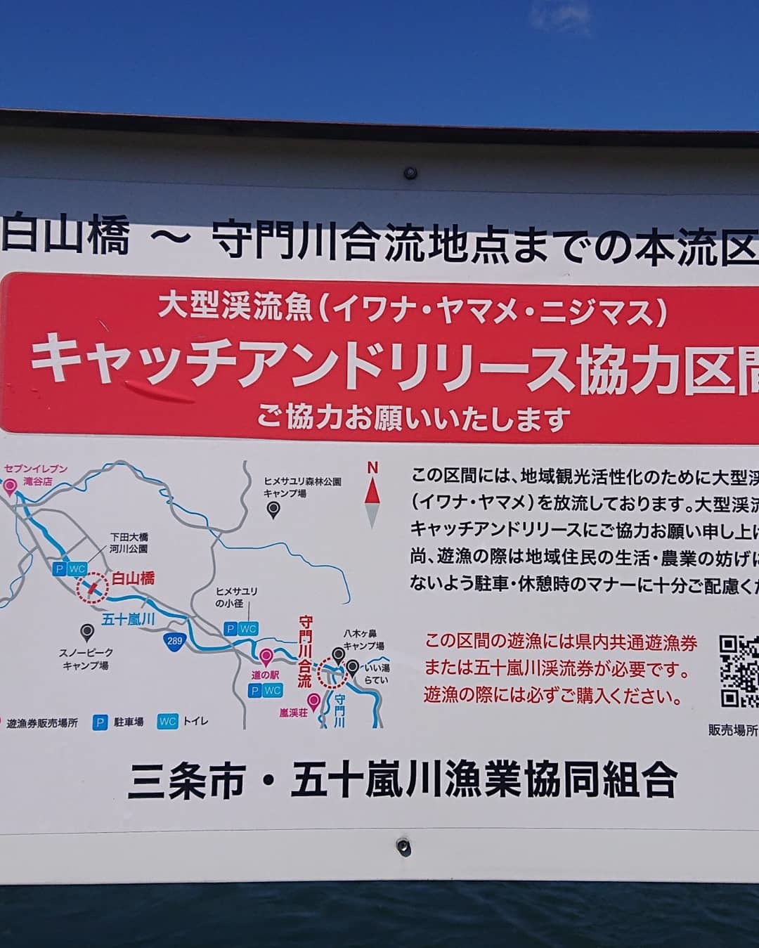 新潟県 三条市を流れる本流五十嵐川の真夏のウエットフライ。_f0055244_13403124.jpg
