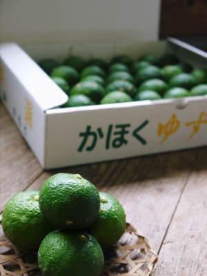 香り高き柚子(ゆず) 令和3年の青柚子の出荷予定と現在の様子 今のうち青唐辛子を購入しておいて下さい_a0254656_18431192.jpg