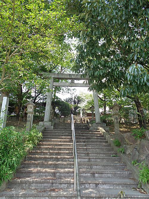 須賀神社 社叢_e0066586_07414670.jpg