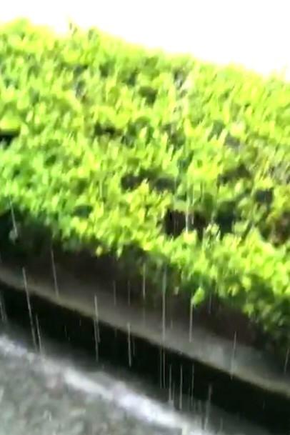 7月18日 「梅雨明け」・「曹源一滴水」_b0255824_20261456.jpg