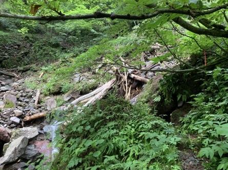 登山道の大雨による被害状況。_f0101226_06395877.jpeg