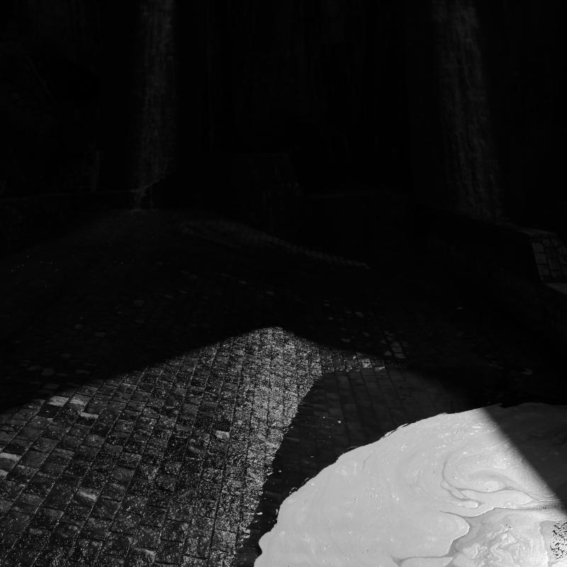 祇園精舎の泡の響き_f0050534_06510638.jpg