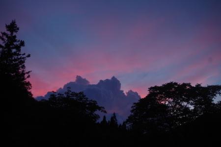 梅雨明け、夕焼け、蝉時雨_f0114346_06415130.jpg