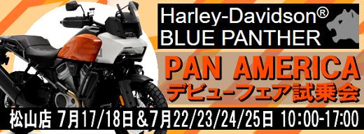 ハーレー話題の新作パンアメリカ試乗会_b0163075_09442589.png