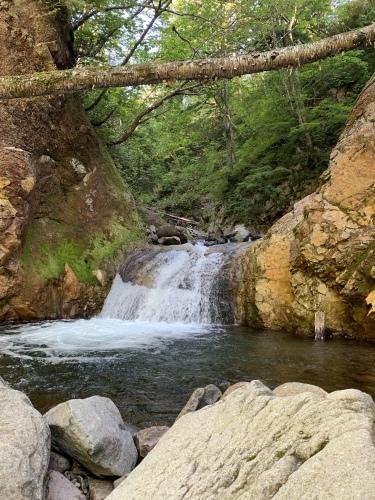 漁岳に沢登り→支笏湖SUP 水遊び大満喫な1日_d0198793_16185101.jpeg