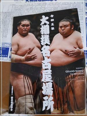 大相撲 名古屋場所_b0172915_17133189.jpg
