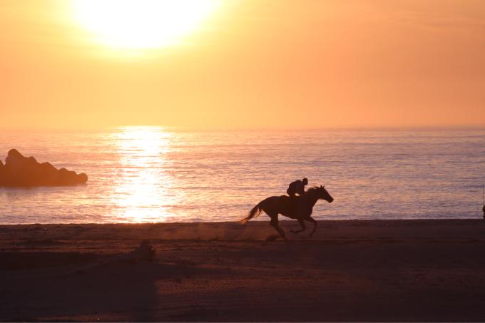 浜辺を走る馬  相馬野馬追い練習風景_c0229025_06132167.jpg