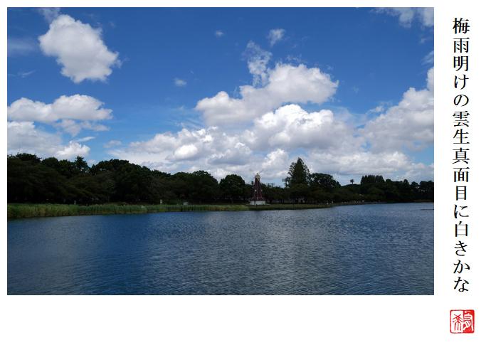 梅雨明けの雲生真面目に白きかな_a0248481_21311928.jpg