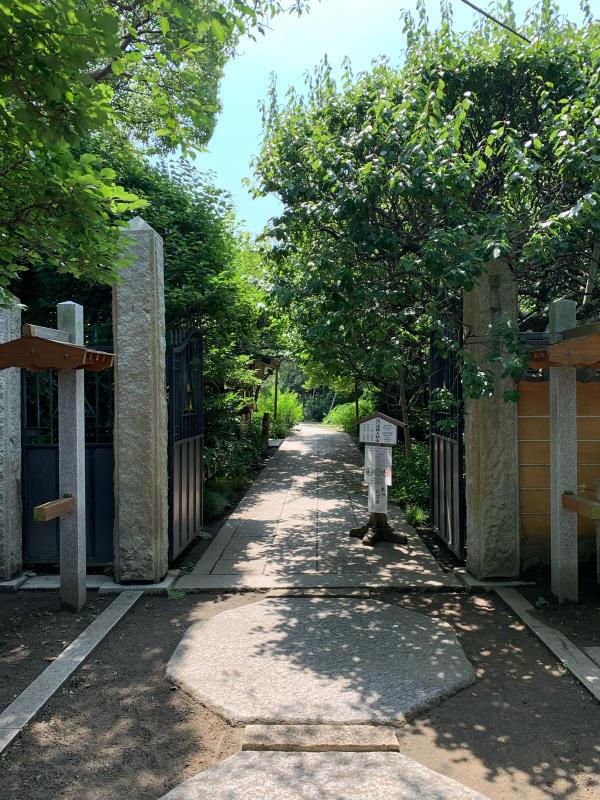Iza Kamakura_b0223512_21394781.jpg