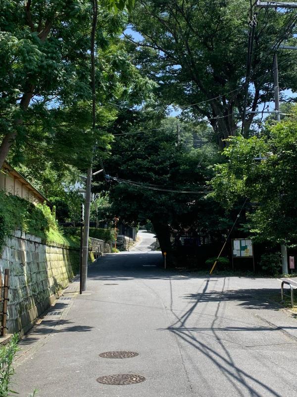 Iza Kamakura_b0223512_21420659.jpg