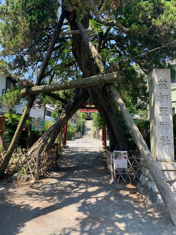 Iza Kamakura_b0223512_21421325.jpg
