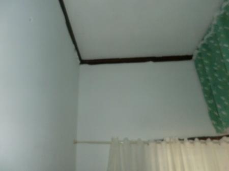 壁塗り_c0072816_15061302.jpg