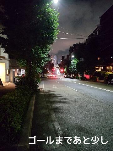 聖火リレー散歩_c0062832_23403658.jpg