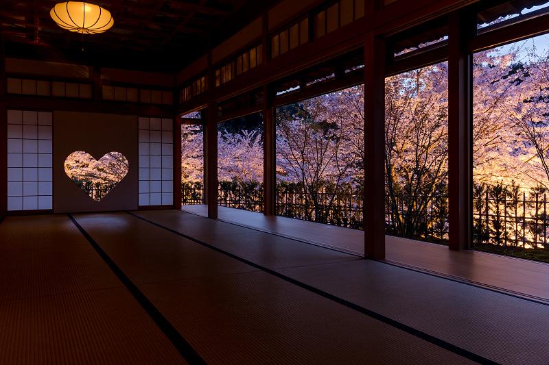 2021桜咲く京都  正壽院ライトアップ_f0155048_22160742.jpg