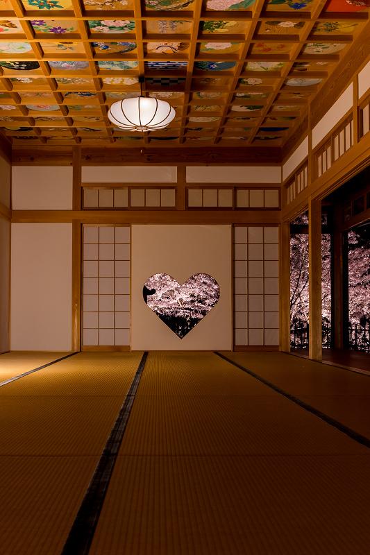 2021桜咲く京都  正壽院ライトアップ_f0155048_22181275.jpg