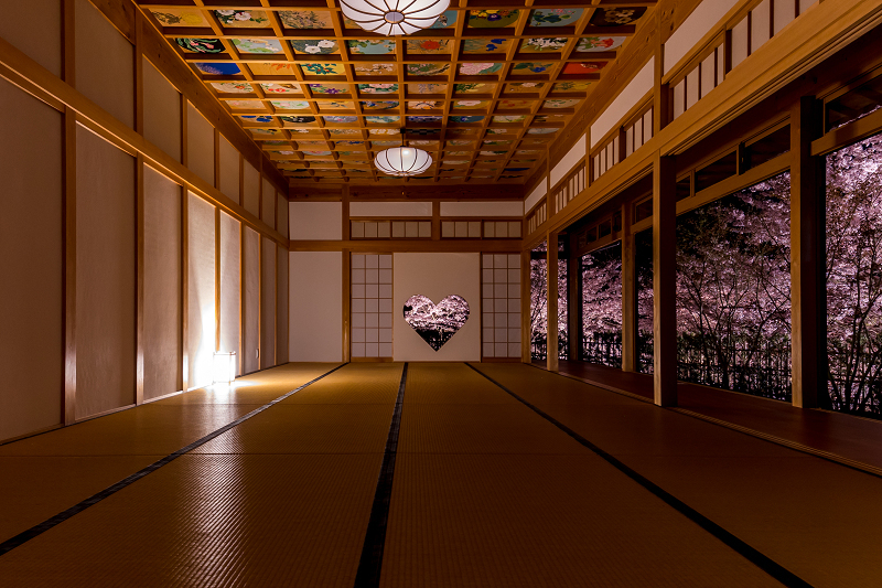 2021桜咲く京都  正壽院ライトアップ_f0155048_22193284.jpg