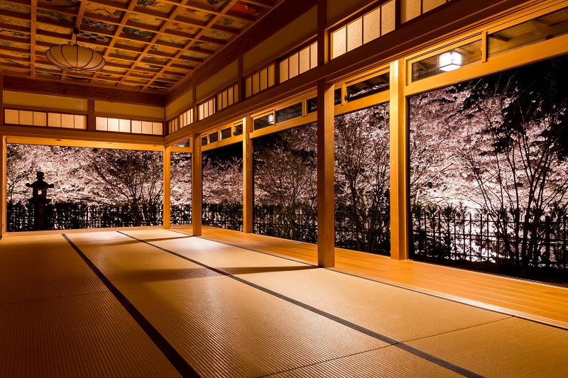 2021桜咲く京都  正壽院ライトアップ_f0155048_22205378.jpg