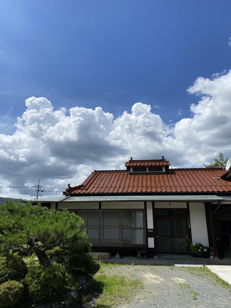 梅雨明けらしい一日 〜外回りのようす〜_c0334574_19132911.jpeg