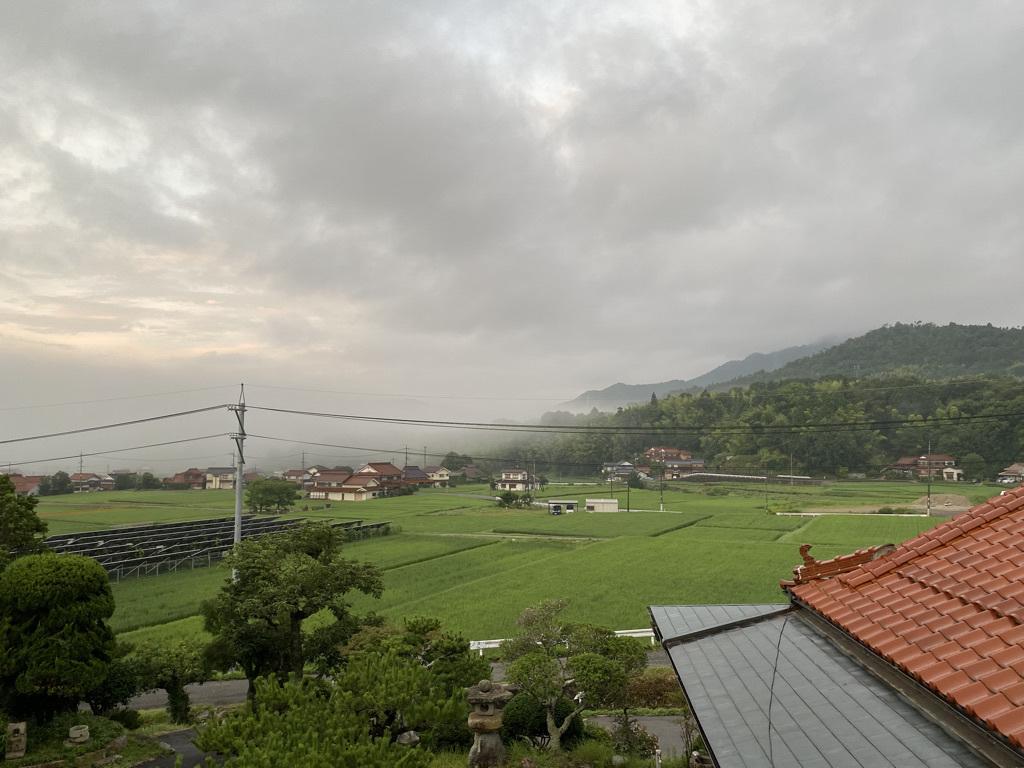 梅雨明けらしい一日 〜外回りのようす〜_c0334574_19171836.jpeg