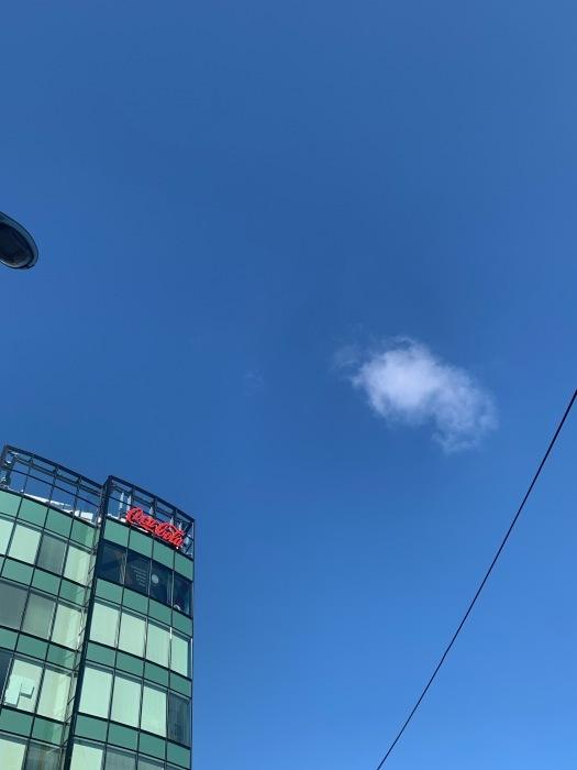 2021.7.20   梅雨明け十日、暑いです。休診のお知らせです。_a0083571_15485610.jpg
