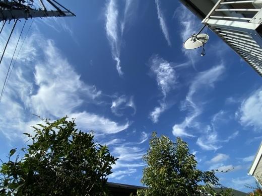 天女さんらが舞う空:オリンピックが始まった_c0192202_13370956.jpg