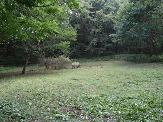草刈り_f0064906_06291446.jpg