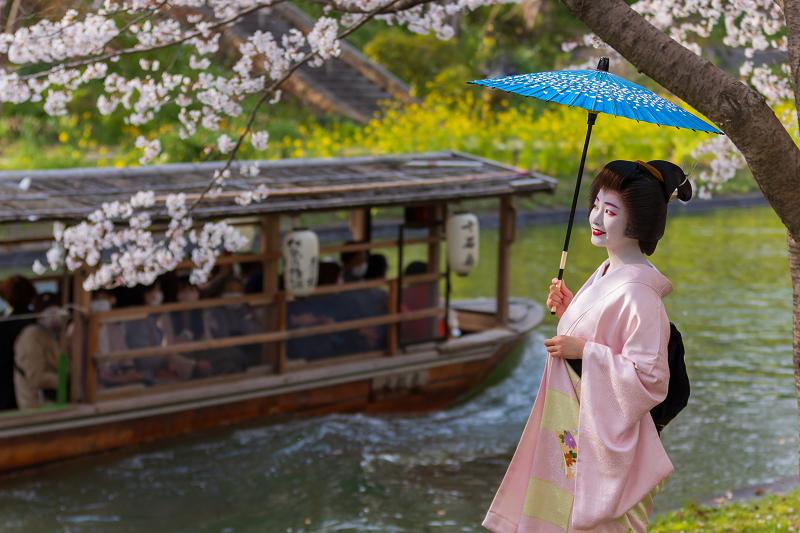 2021桜咲く京都  伏見濠川の桜と澱川橋梁_f0155048_23321429.jpg