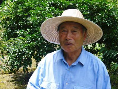 熊本県産!無農薬栽培の『種なしかぼす』令和3年の出荷は8月中旬からです!今年も順調に成長中!_a0254656_18215763.jpg