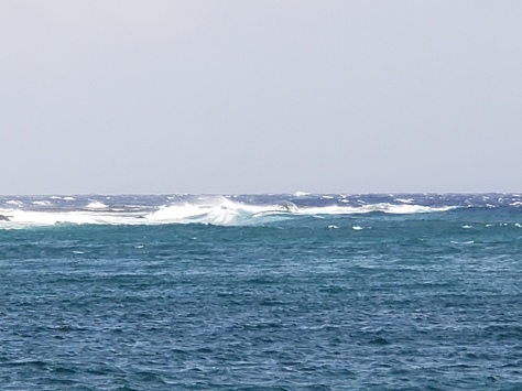 7月21日 台風が来る!!_d0113459_17024444.jpg