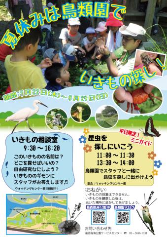 ★さあ、鳥類園にいこう!夏休み企画(7月22日~8月29日)_e0046474_20342345.jpg