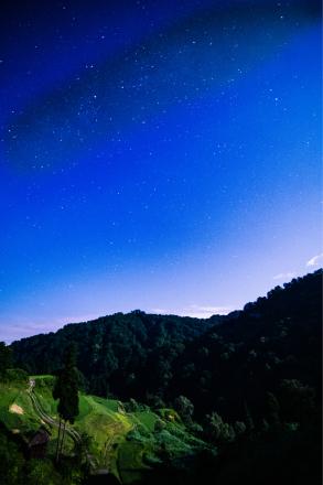 月明かりと星明かり_a0025576_22431645.jpg
