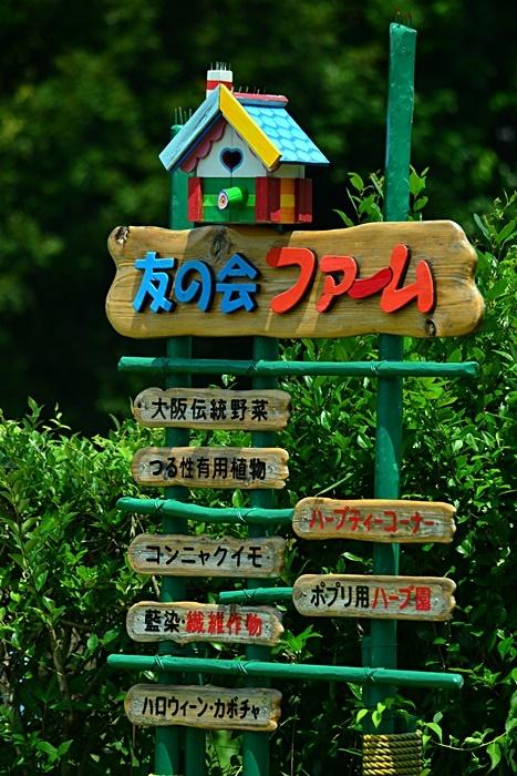 大阪市立大学理学部付属植物園 ④_a0240403_09443512.jpg