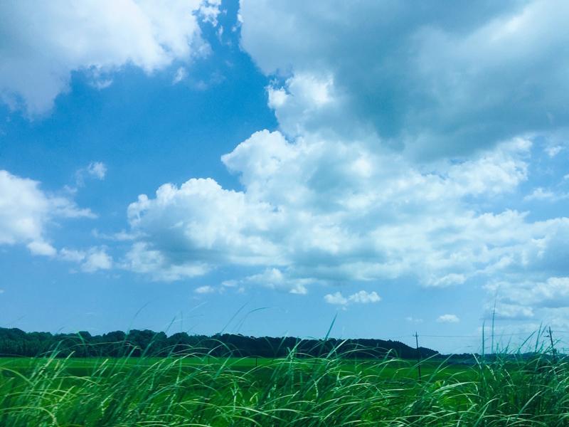 空に想ウ…_d0265238_07322352.jpg