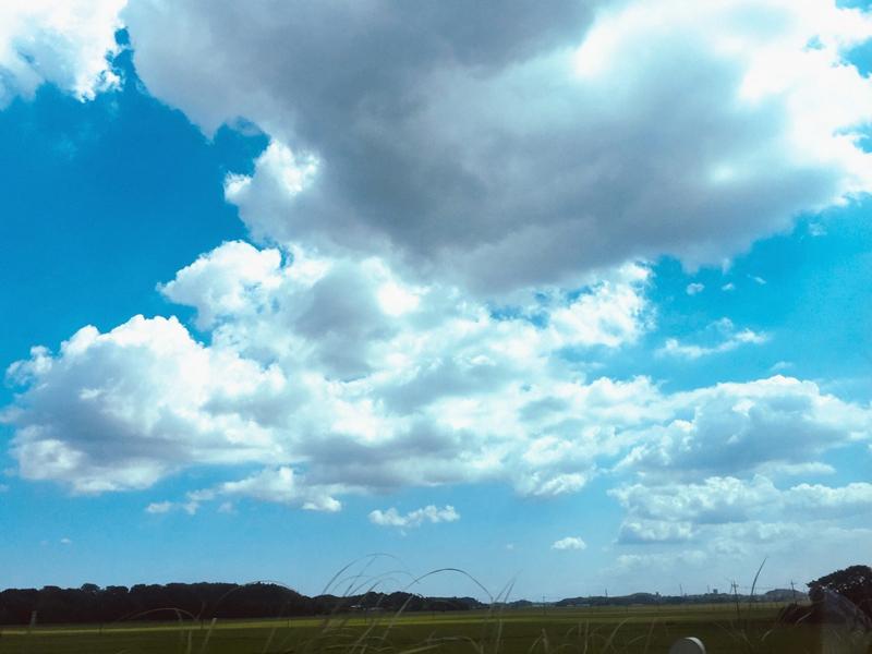 空に想ウ…_d0265238_07322828.jpg