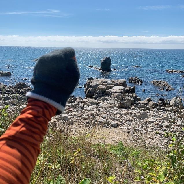 絶品!ウニを堪能ブロンプトン で奥尻島を走って来ました!前編_d0197762_19353261.jpeg