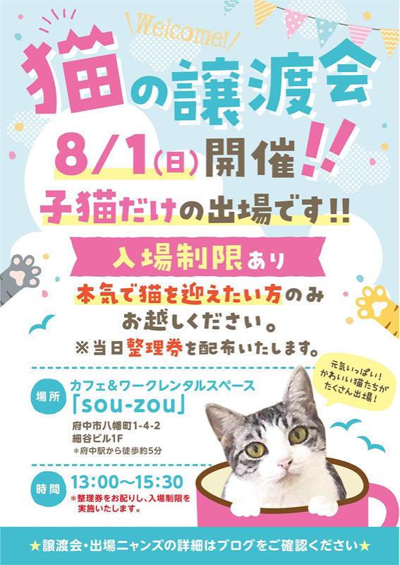 【YouTube】緊急子猫レスキューが入った為メイちゃんのベビ達を移動させます【kittens】_c0405294_13245847.jpg