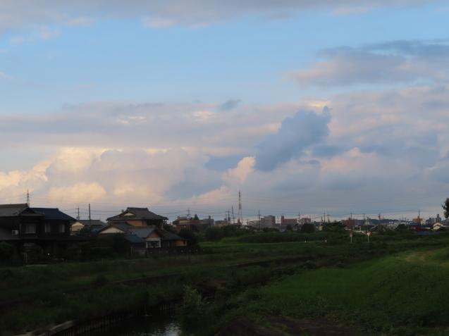 今朝も蓮田を通って 2021/07/23_d0048812_16063416.jpg