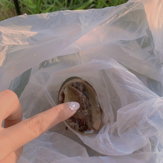 続・絶品ウニを堪能!ブロンプトンで奥尻島を走って来ました!後編_d0197762_04155079.jpeg
