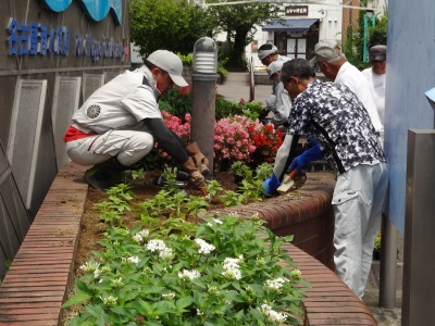ガーデンふ頭総合案内所前花壇の植替えR3.7.12_d0338682_14274303.jpg